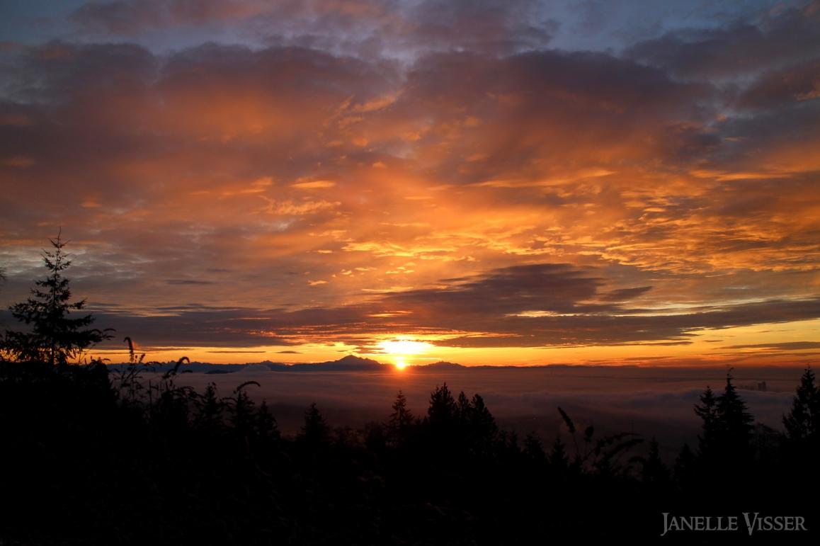19 - cypress sunrise wm